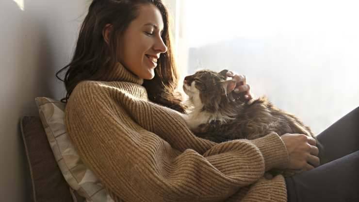 le fusa del gatto sono terapeutiche