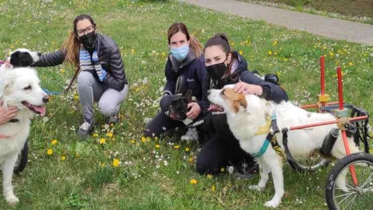 Le volontarie dell'associazione (Foto Facebook)