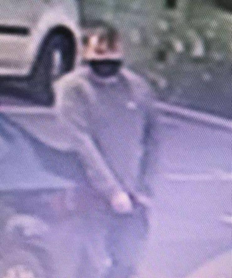 le riprese della telecamere di sorveglianza di uno dei rapitore (Foto Facebook)