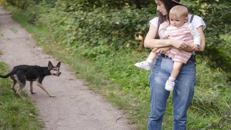 Paura degli animali nei bambini