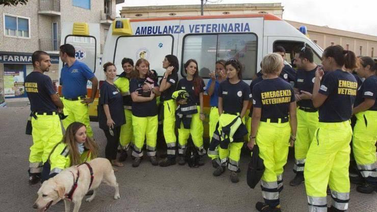 Ambulanza Veterinaria Brescia
