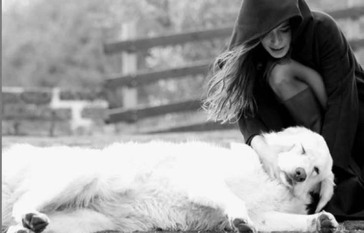 Giulia Michelini e il cane (Foto Instagram)