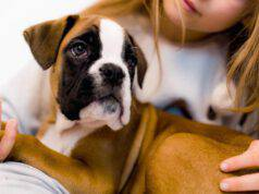 astenia cutanea cane
