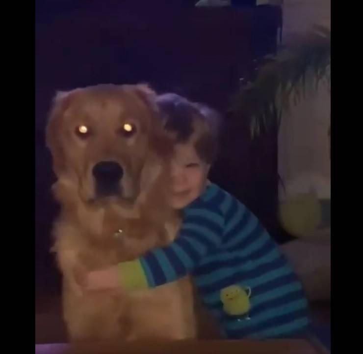 cucciolo ricambia abbraccio bambino video