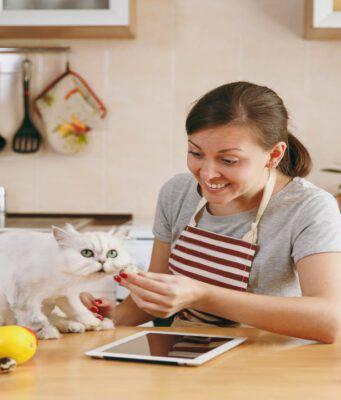Cibi umani per gatti