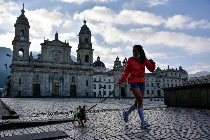 Sport con il cane