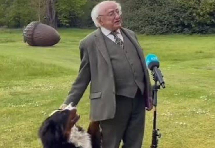 Presidente Irlanda Discorso Cane Video