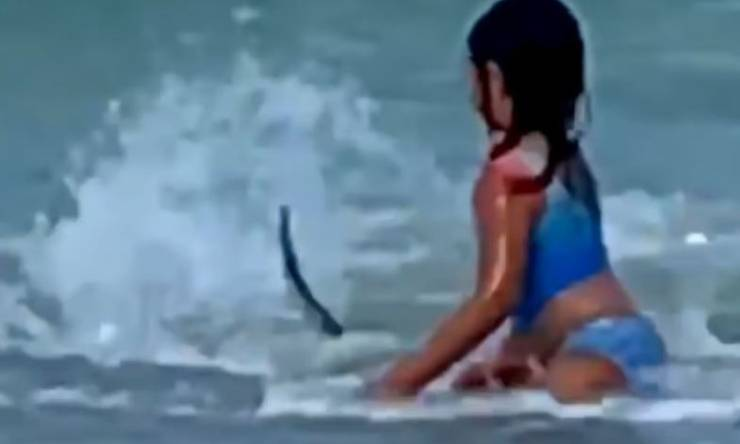 Bambina Squalo Hawaii Video