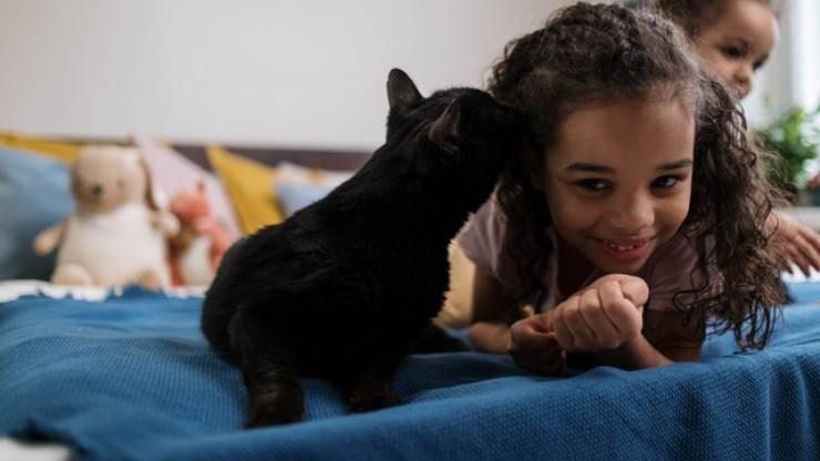 bambina e gatto