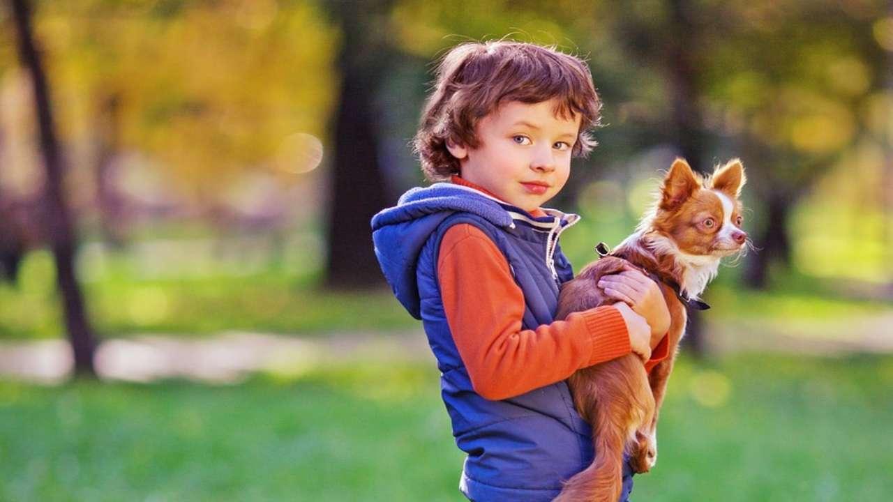 Un bimbo e il cane (Foto Pixabay)