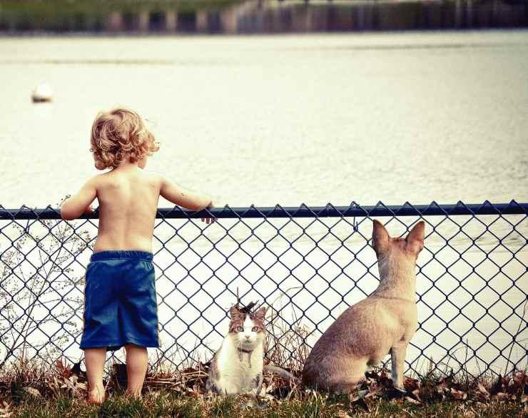 Bambino e animali domestici