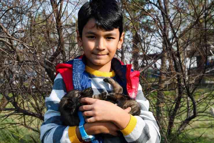 Il cane in braccio al bimbo (Foto Pixabay)