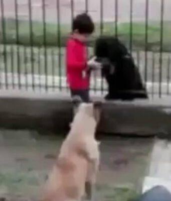 L'altruismo di un bambino (Foto video)