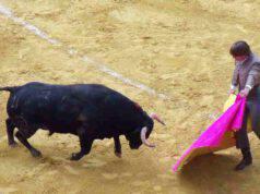 Spettacoli o manifestazioni vietati aventi ad oggetto animali