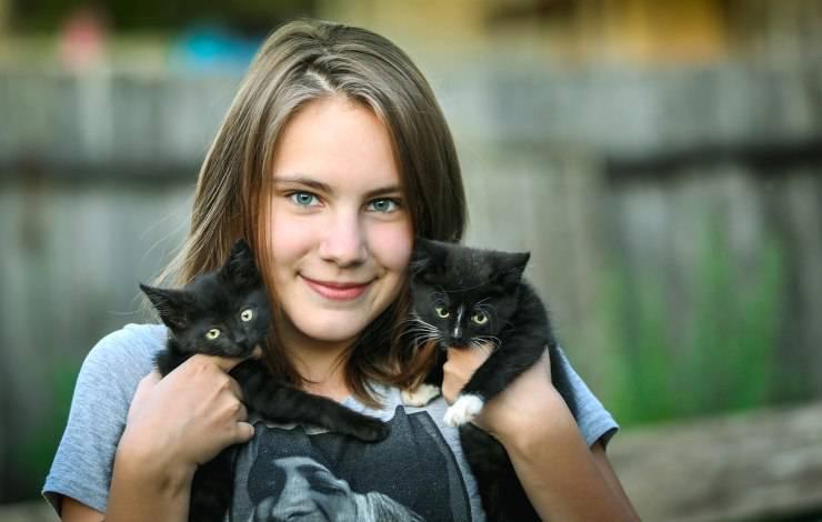 gattini e ragazza