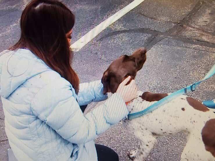 La giornalista che ha individuato il cane rapito e il suo rapitore(Foto Twitter)