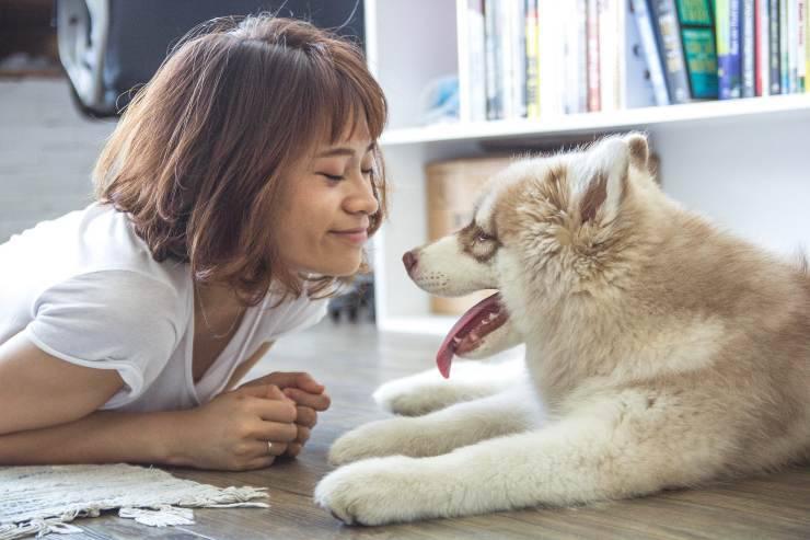 Oligoelementi per il cane