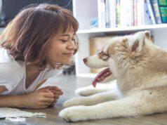 Sostanze nutritive per il cane