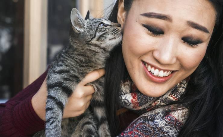 insegnare al gatto dare baci