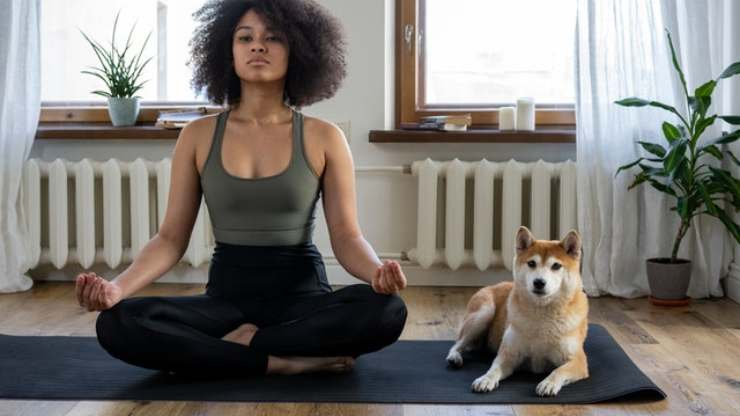 mindfulness aiuta la relazione con cane