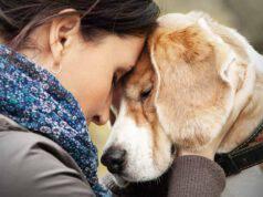 parlare telepaticamente con cane