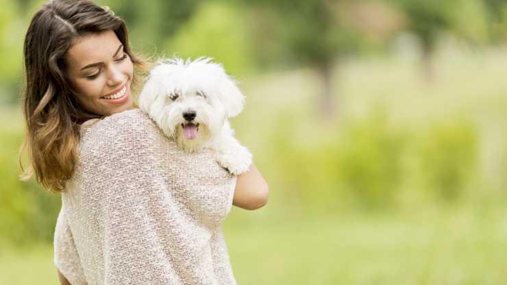 razze di cani amate dalle donne