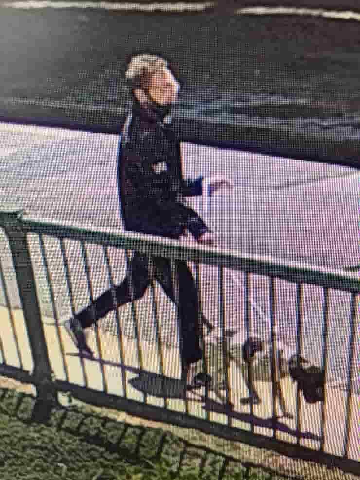 Titus il cane rapito con il suo rapitore (Foto Twitter)