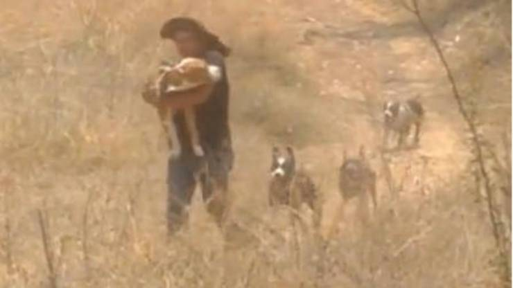 Il padrone e il cane (Foto video)