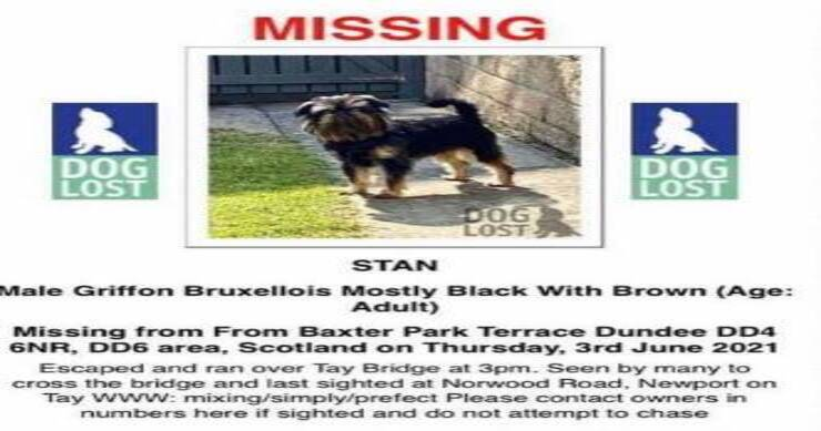 Annuncio scomparsa Stan (Screen Facebook)