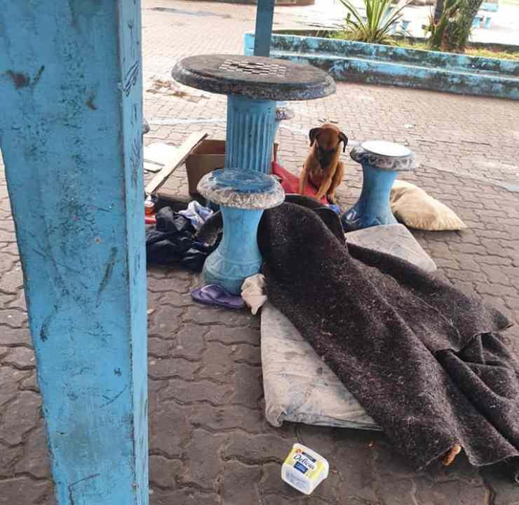 cane non abbandona corpo senzatetto