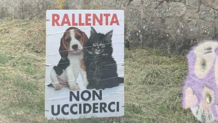 I cartelli sulla strada (Foto Facebook)