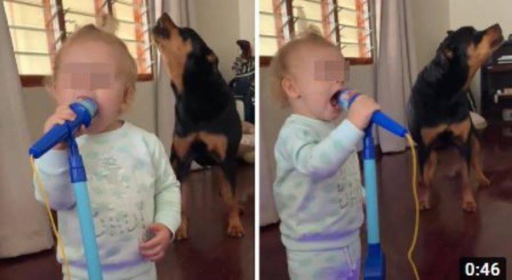cane bambina duetto video