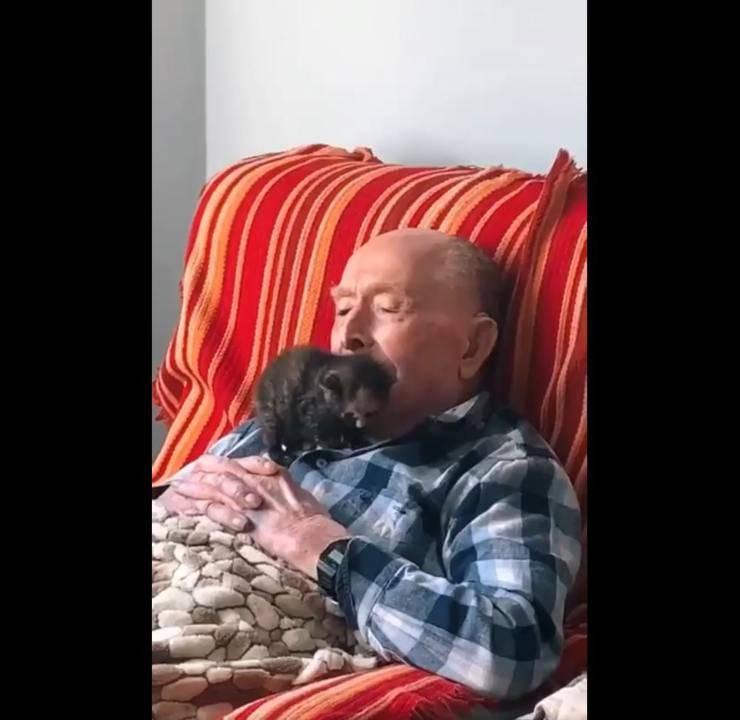 nonno 100 anni gattino