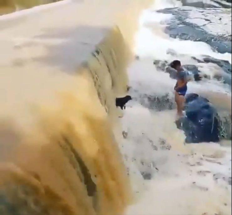 cane sotto cascata video