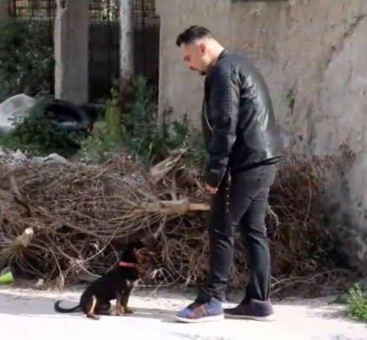 Fotogramma corto contro abbandono animali (Screen Video)