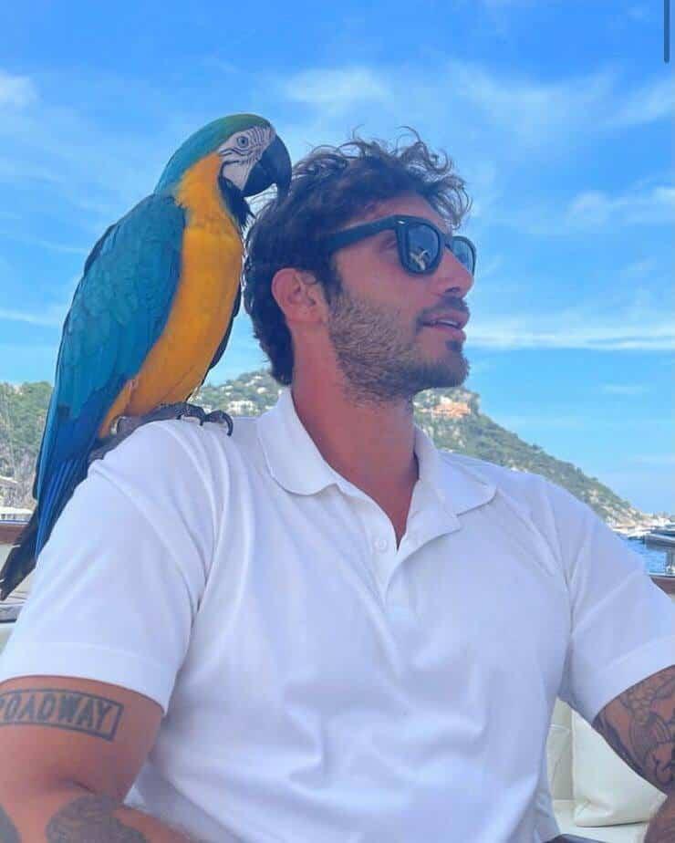 Stefano De Martino e Totò (Screen Instagram)