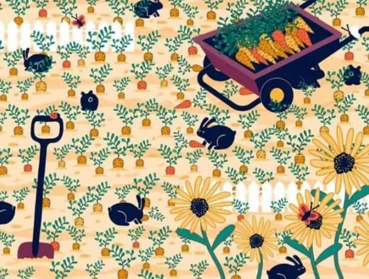 test visivo trova la fede nuziale nascosta nel campo di carote tra i conigli i fiori e le farfalle