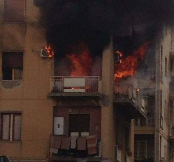 Polizia interviene per portare in salvo animali e persone dal palazzo in fiamme