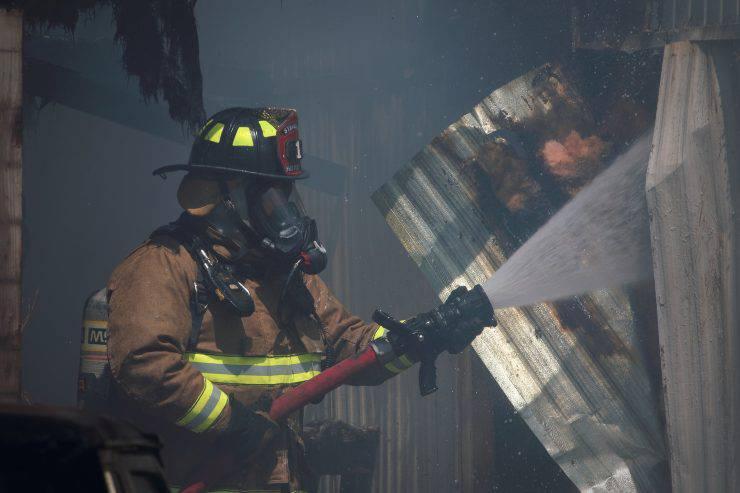 vigili fuoco salvano tre cani
