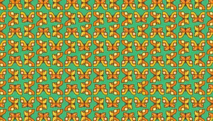 Test farfalle diverse