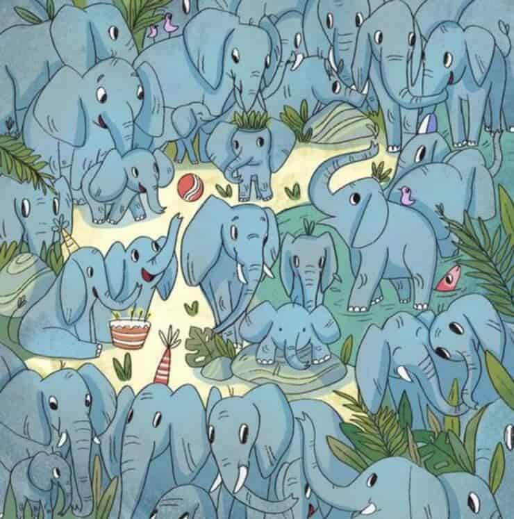 Il test visivo dell'orfano tra gli elefanti : riuscite a trovarlo?