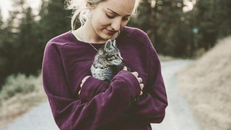 tipi relazioni gatto uomo