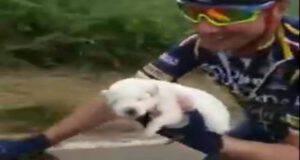 Il cucciolo salvato dal Team Anagni Bike (Screen video Youtube)