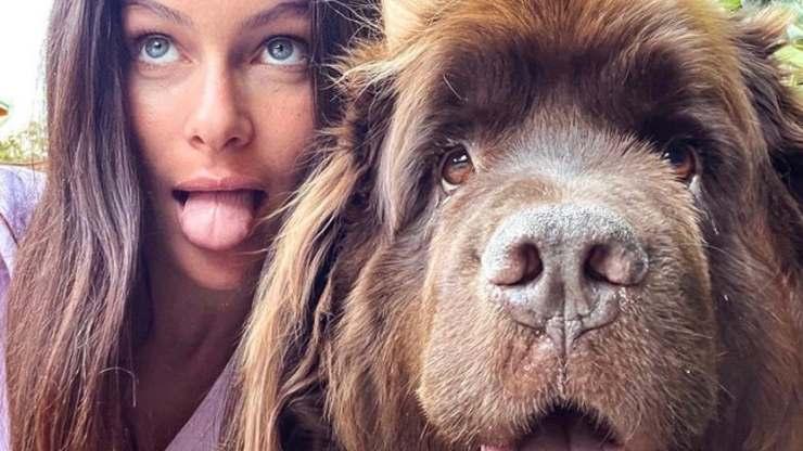 Paola Turani e i suoi cani