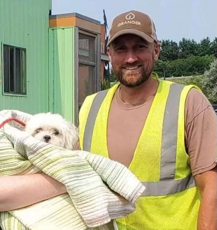 Il cane salvato dal camion dei rifiuti da un funzionario addetto allo smaltimento (Foto Facebook)