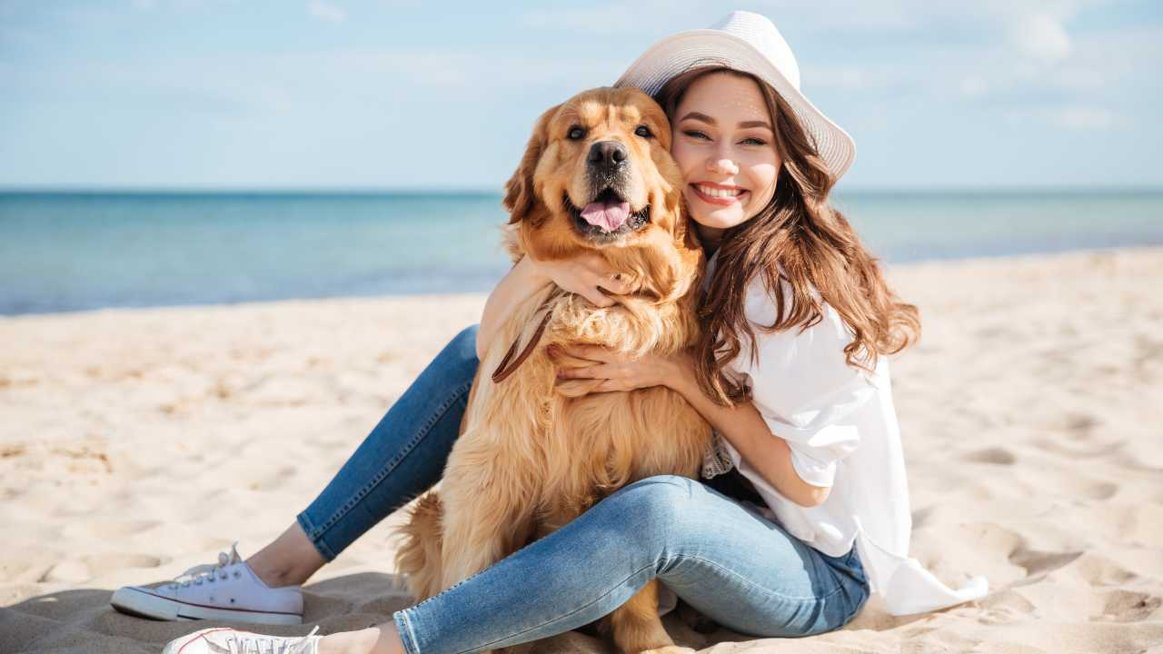 Cane in spiaggia, cosa stabilisce la legge