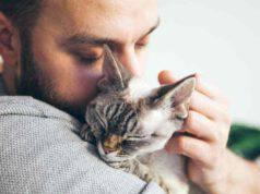 Il lutto nel gatto