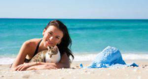 Si può portare il gatto in spiaggia?