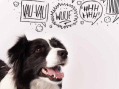 Come abbaiano i cani nelle altre lingue