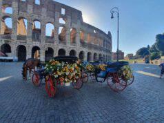 Botticelle Roma Stop Campidoglio Nuova Ordinanza
